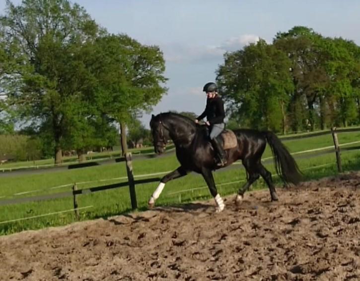Emmy Spikkert riding a horse.